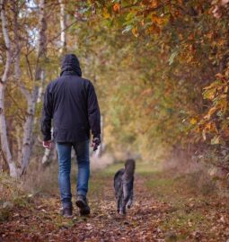 Top 8 Mental And Physical Health Benefits Of Owning A Pet