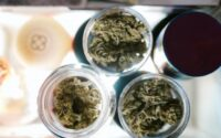 Can I Get a CDL with a Medical Marijuana Card?